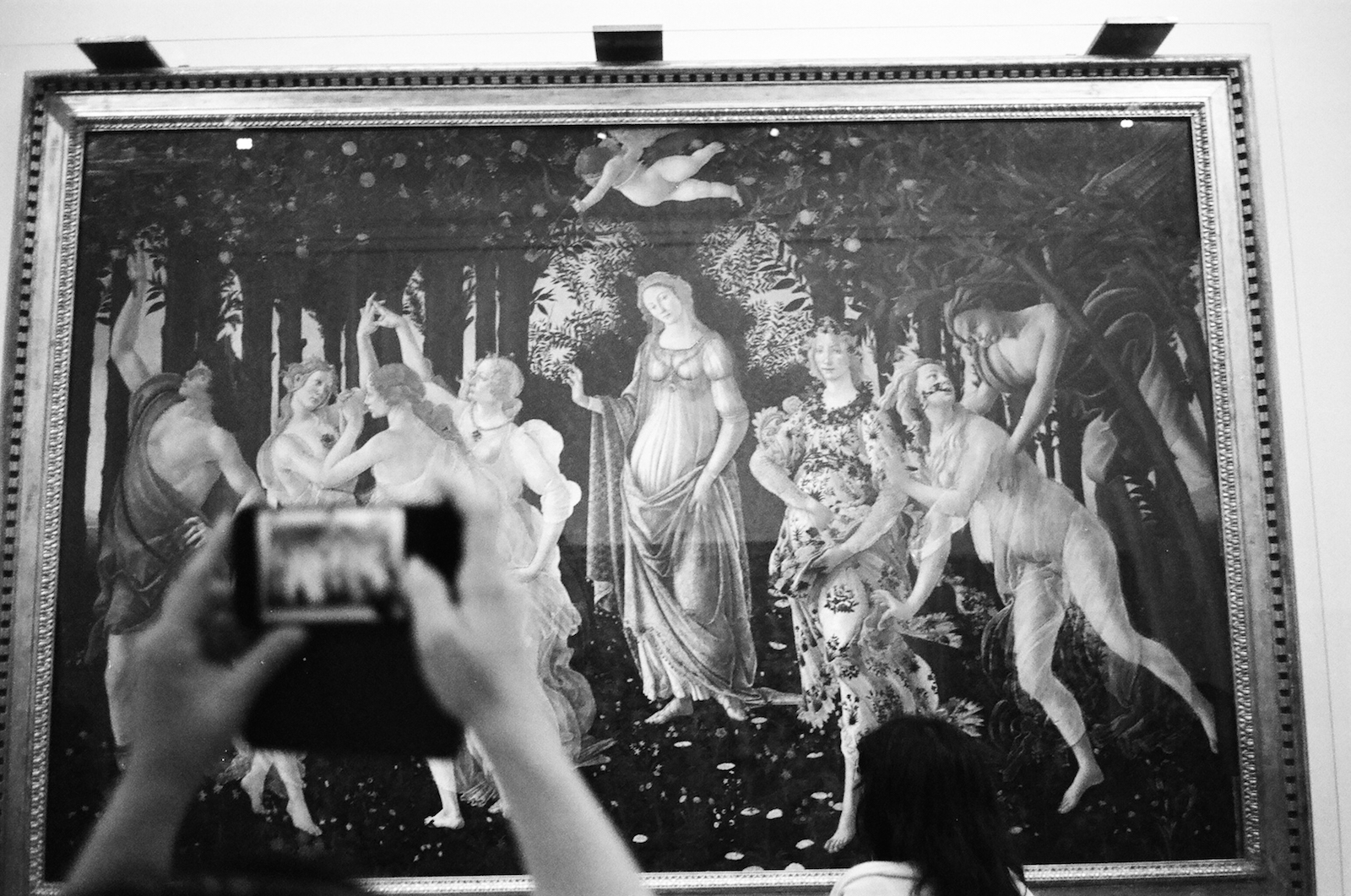 taking a picture of boticelli in florence